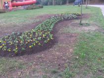 Podzimní výsadba květinových záhonů.