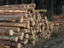 Výzva k podání návrhu na uzavření kupní smlouvy na 2 000 m3 dřevní hmoty, pro 1. čtvrtletí 2016.