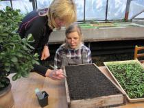 Studenti střední školy pro sluchově postižené na odborné praxi v zahradnictví.